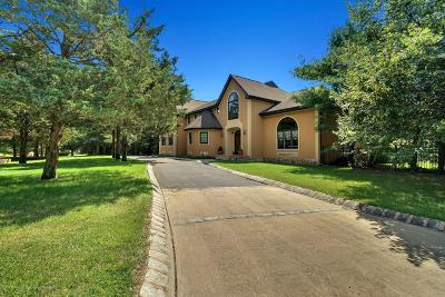 Single Family Home For Sale: 1319 Vincenzo Drive