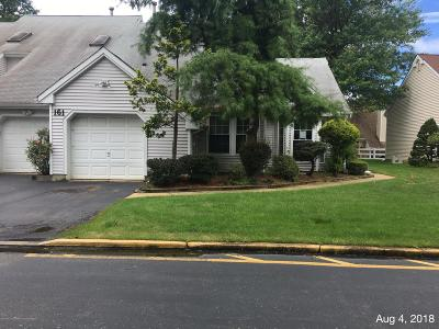 Freehold NJ Condo/Townhouse For Sale: $250,000