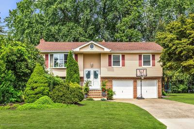 Freehold Single Family Home For Sale: 6 Kenmore Road