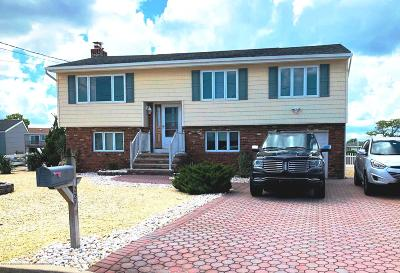 Barnegat Single Family Home For Sale: 227 Biscayne Road