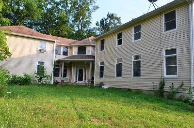 Freehold Single Family Home For Sale: 301 Hendrickson Road