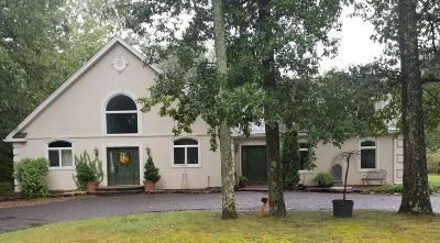 Howell Single Family Home For Sale: 392 Alexander Avenue