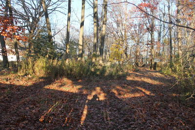 Freehold Residential Lots & Land For Sale: 458 Ely Harmony Road