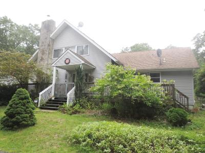 Ocean County Single Family Home For Sale: 336 Lakewood Road