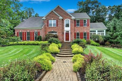 Monmouth County Single Family Home For Sale: 8 Daybreak Court