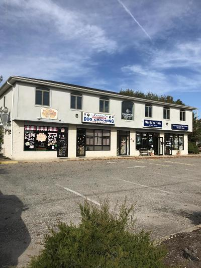 Commercial For Sale: 2060 Route 88