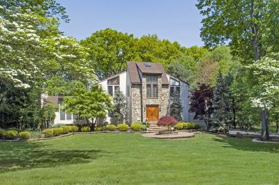 Holmdel NJ Single Family Home For Sale: $999,900