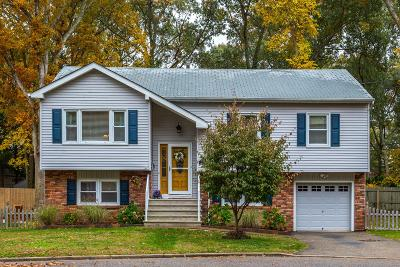 Point Pleasant Single Family Home For Sale: 2408 Maria Place