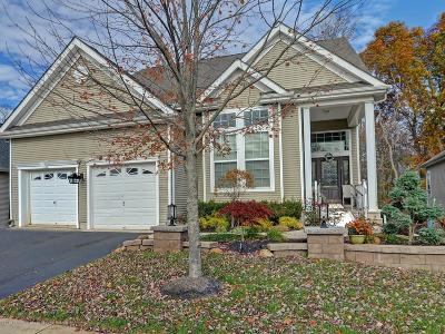 Manalapan Adult Community For Sale: 45 Wintergreen Drive