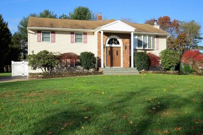 Freehold Single Family Home For Sale: 18 Homestead Road