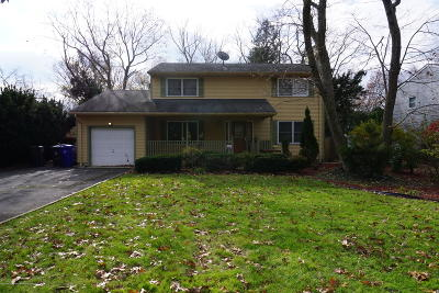 Toms River Single Family Home For Sale: 381 Luane Road
