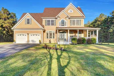 Ocean County Single Family Home For Sale: 1900 New York Avenue