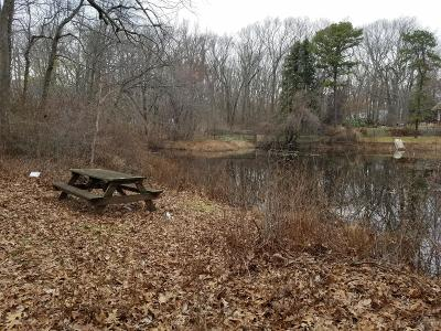 Lakewood Residential Lots & Land For Sale: 21 Shady Lane Drive