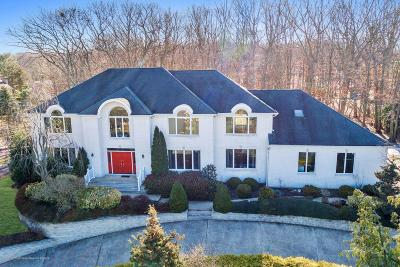 Ocean Twp Single Family Home For Sale: 16 Brandywine Road