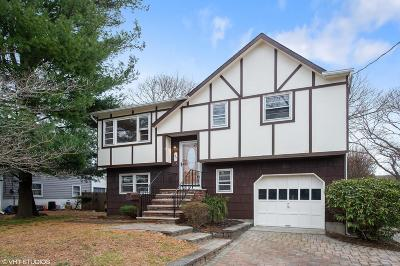 Red Bank Single Family Home For Sale: 37 Delaware Avenue