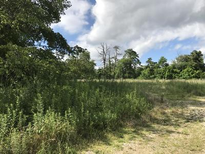 Residential Lots & Land For Sale: 872 Mantoloking Road