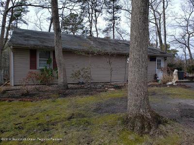 Single Family Home For Sale: 175 Syringa Street