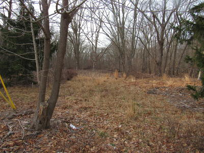 Freehold Residential Lots & Land For Sale: 258 Jackson Mills Road