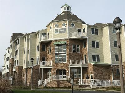 Monmouth County Condo/Townhouse For Sale: 33 Cooper Avenue #213