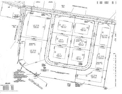 Residential Lots & Land For Sale: 9 Allyson Way