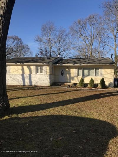 Toms River Single Family Home For Sale: 900 Briar Avenue