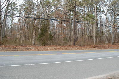 Residential Lots & Land For Sale: 890 Route 9