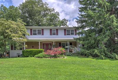 Ocean County Single Family Home For Sale: 126 Tunes Brook Drive