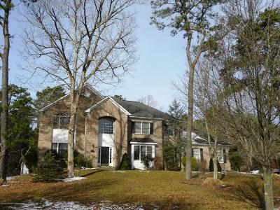 Ocean County, Monmouth County Single Family Home For Sale: 20 Saint Mary Avenue