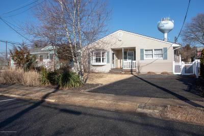 Point Pleasant Single Family Home For Sale: 417 Washington Avenue