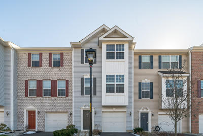 Freehold Condo/Townhouse For Sale: 249 Chickadee Court #1000