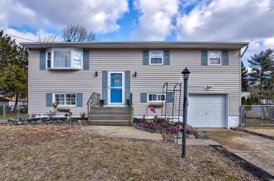 Jackson NJ Single Family Home For Sale: $283,000
