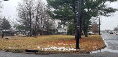 Hamilton Residential Lots & Land For Sale: 147 Douglas Avenue