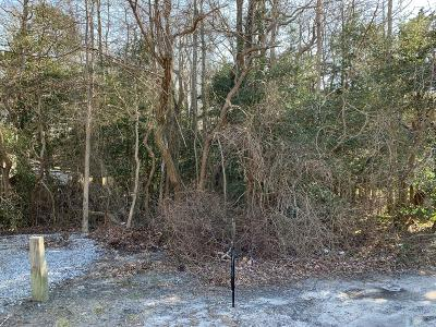 Residential Lots & Land For Sale: 66 Clearwater Drive