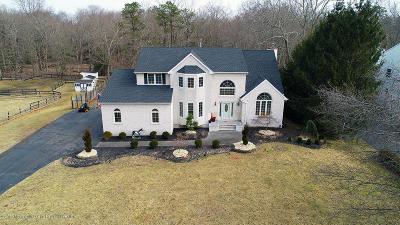 Jackson Single Family Home For Sale: 289 E Bird Village Road