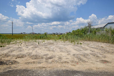 Residential Lots & Land For Sale: 243 Brant Drive