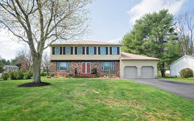 Manalapan Single Family Home For Sale: 7 Sandpiper Drive