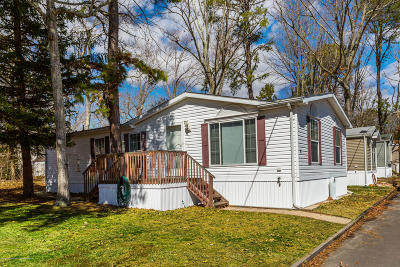 Jackson Single Family Home For Sale: 16 Lace Bark Lane