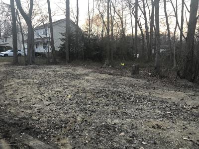 Residential Lots & Land For Sale: 118 Euclid Avenue