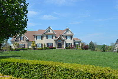 Monmouth County Single Family Home For Sale: 10 Hop Brook Lane