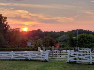 Monmouth County Farm For Sale: 850 Monmouth Road