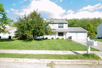 Toms River Single Family Home For Sale: 602 Haifa Court
