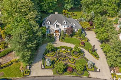Holmdel NJ Single Family Home For Sale: $1,289,900