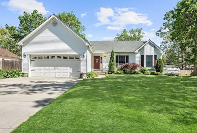 Ocean County Single Family Home For Sale: 119 Riptide Avenue