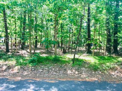 Residential Lots & Land For Sale: 00 Willys Lane