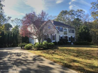 Jackson Single Family Home For Sale: 270 Butterfly Road