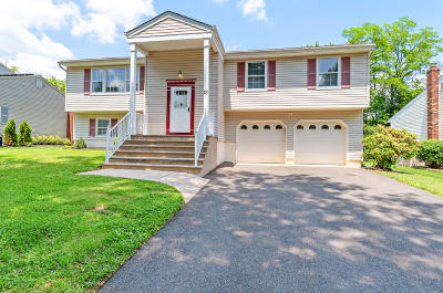Freehold Single Family Home Under Contract: 25 Birch Drive