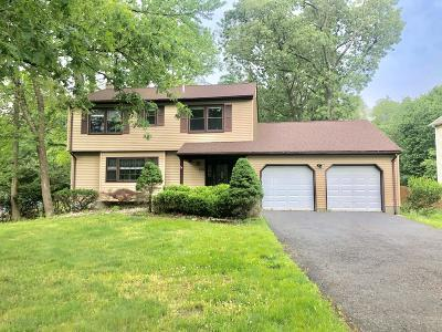 Manalapan Single Family Home For Sale: 215 Pease Road