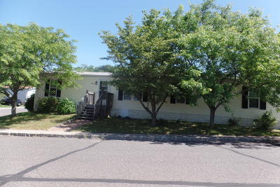 Howell Single Family Home For Sale: 19 Ruffian Way