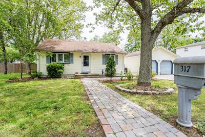 Brick Single Family Home For Sale: 317 Birch Bark Drive