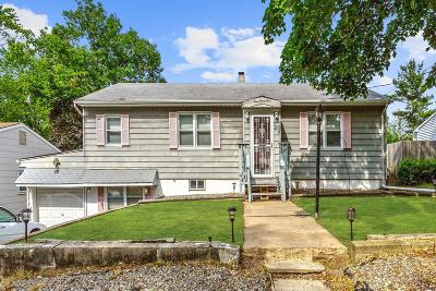 Brick Single Family Home For Sale: 393 Hudson Drive